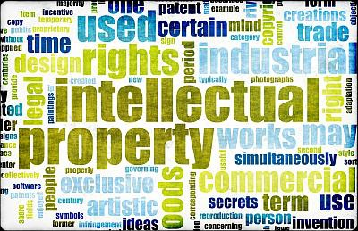 <p>INTELLECTUAL PROPERTY RIGHTS</p>