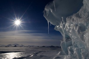 Icicles melting in the Arctic midnight sun