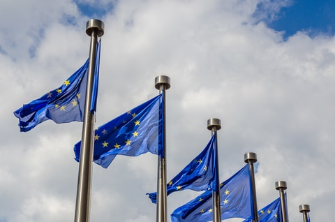 The EU: A Love-Hate Relationship •