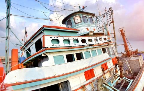 The Economics and Geopolitics of Global Fisheries •