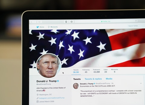 Trump Calms Down on Twitter, Improves Poll Numbers •