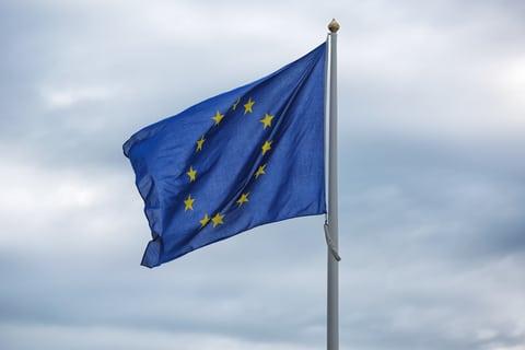 The Fear Factor of Europe's Public Debt •